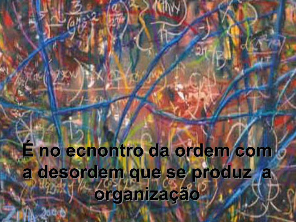 É no ecnontro da ordem com a desordem que se produz a organização