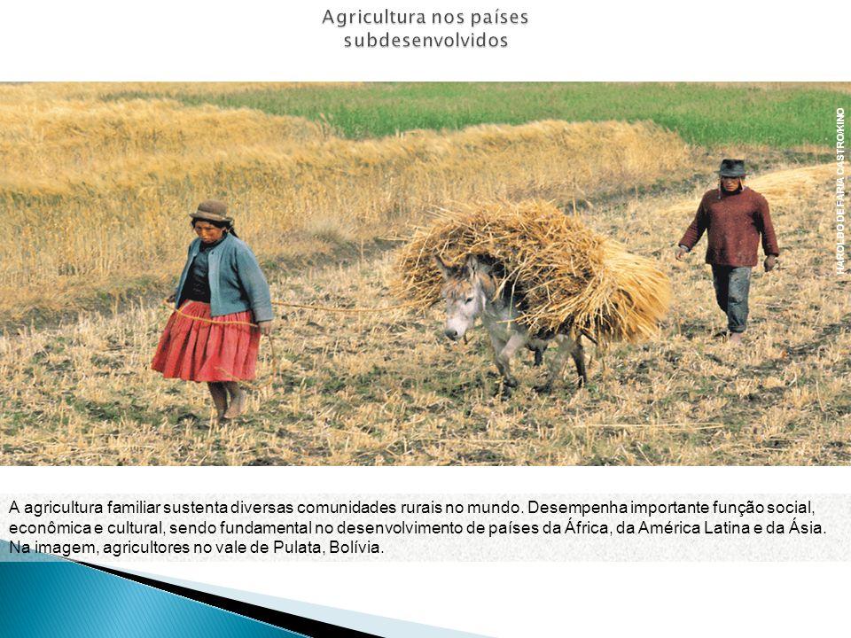 Agricultura nos países subdesenvolvidos