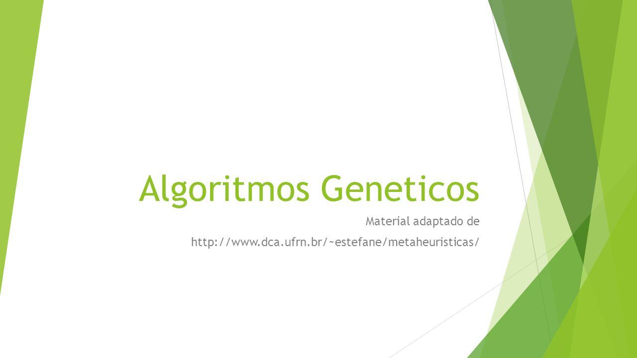 Material adaptado de http://www.dca.ufrn.br/~estefane/metaheuristicas/