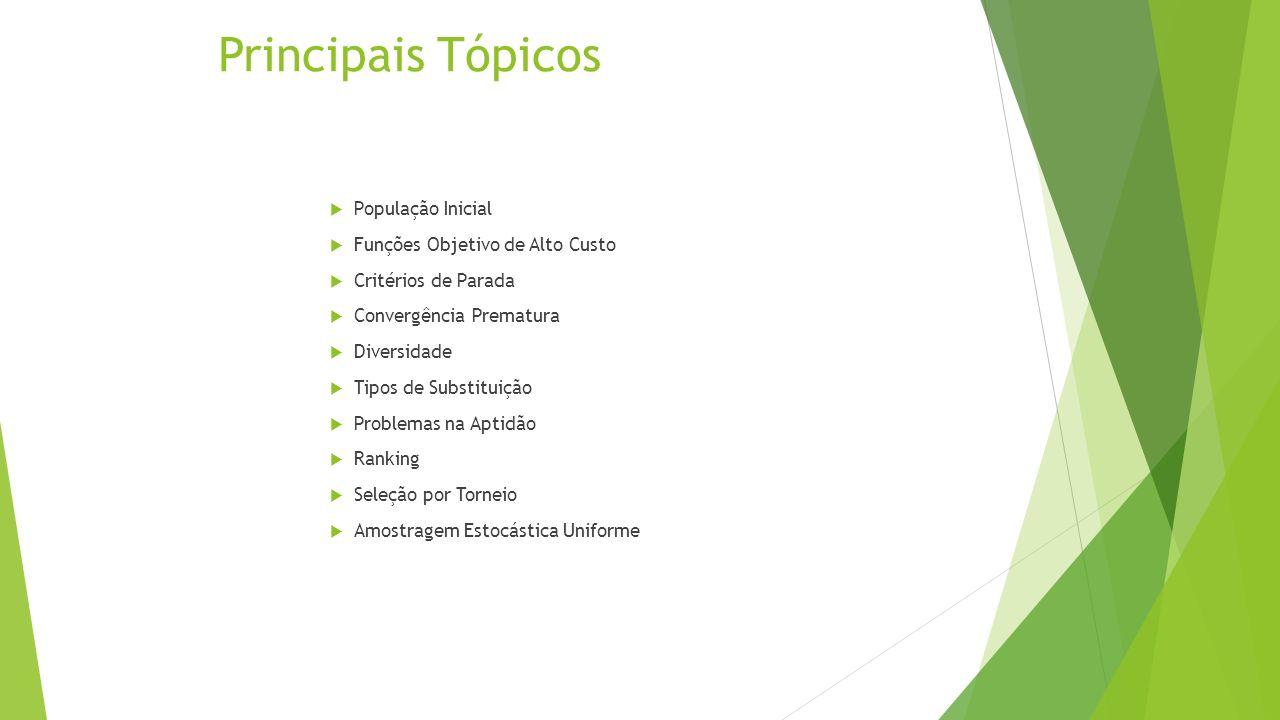 Principais Tópicos População Inicial Funções Objetivo de Alto Custo