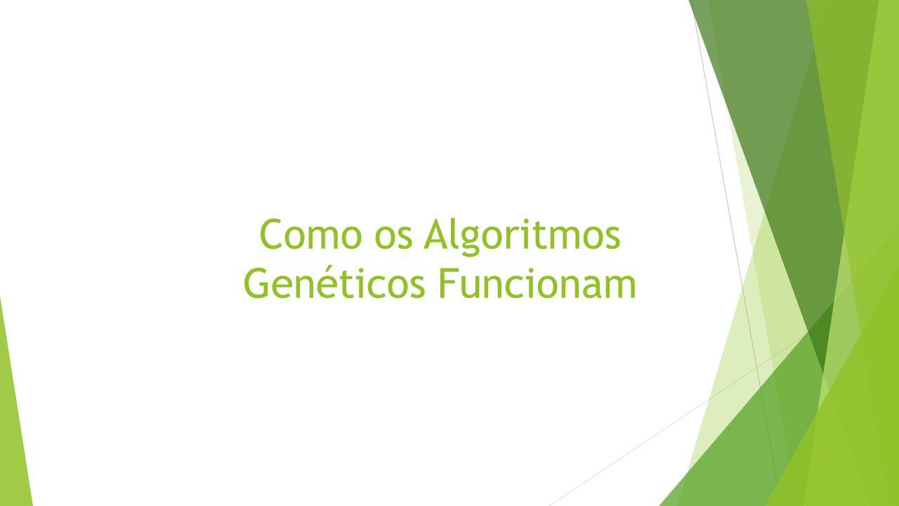 Como os Algoritmos Genéticos Funcionam
