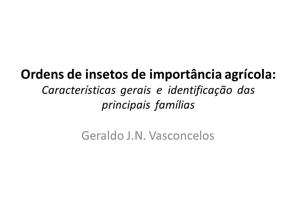 Geraldo J.N. Vasconcelos