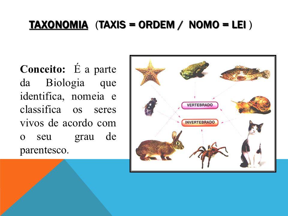 Taxonomia (taxis = ordem / nomo = lei )