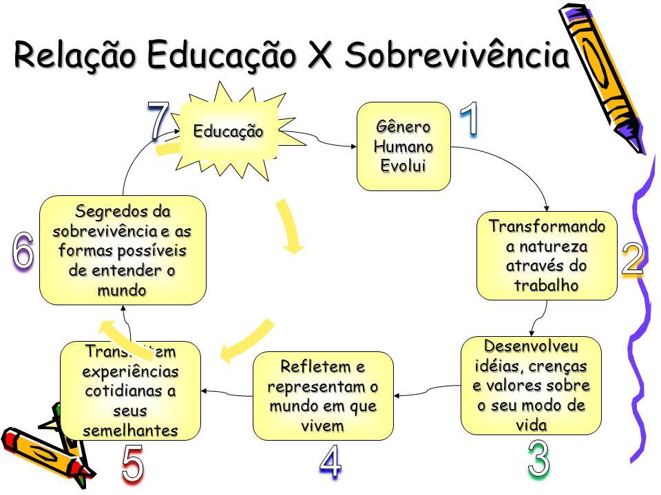 Relação Educação X Sobrevivência