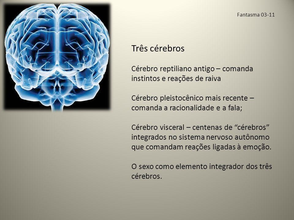 Fantasma 03-11 Três cérebros. Cérebro reptiliano antigo – comanda instintos e reações de raiva.