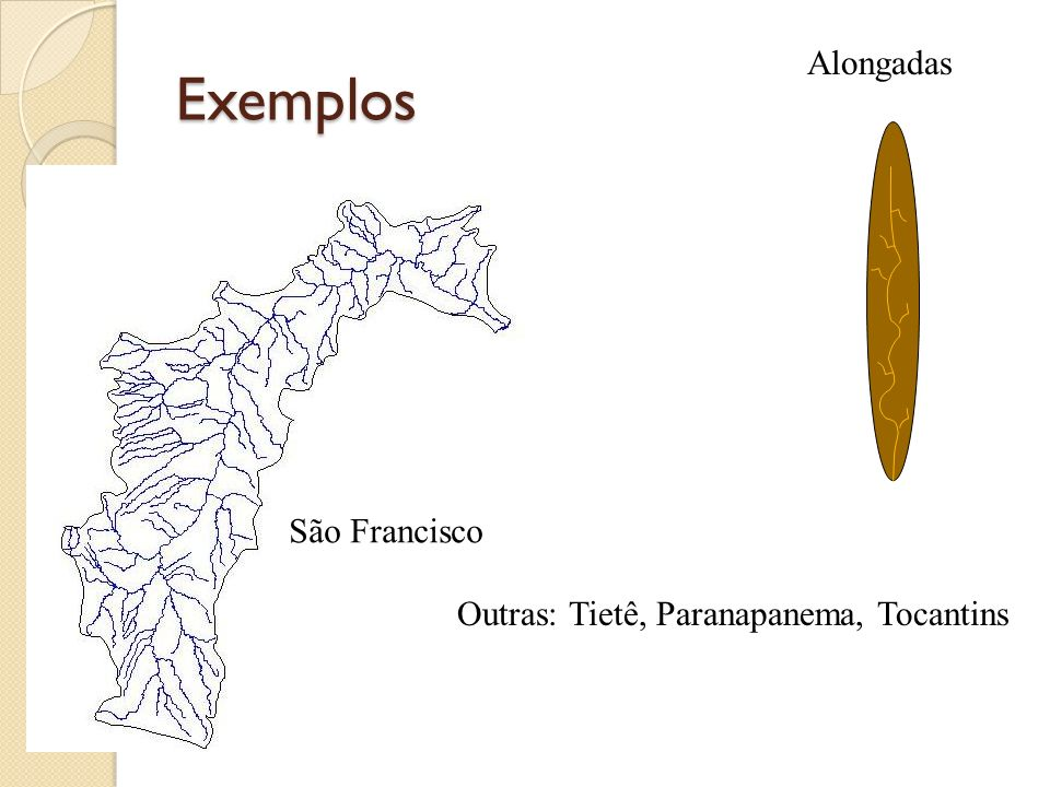 Exemplos Alongadas São Francisco