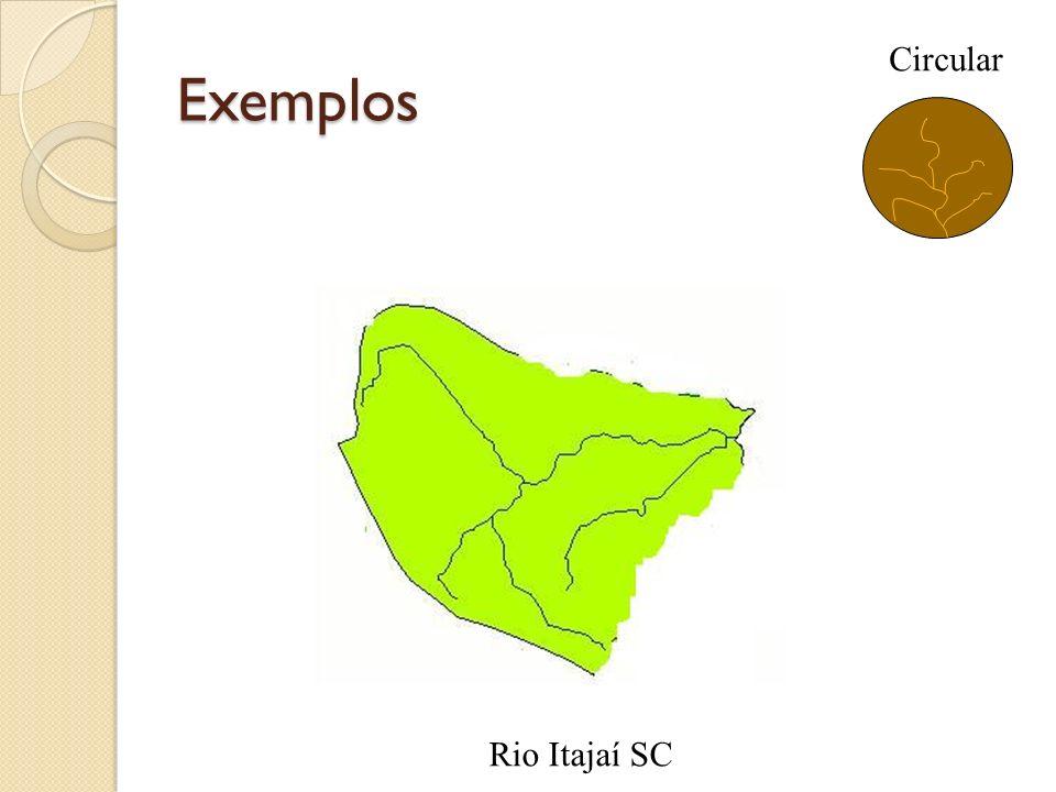 Exemplos Circular Rio Itajaí SC