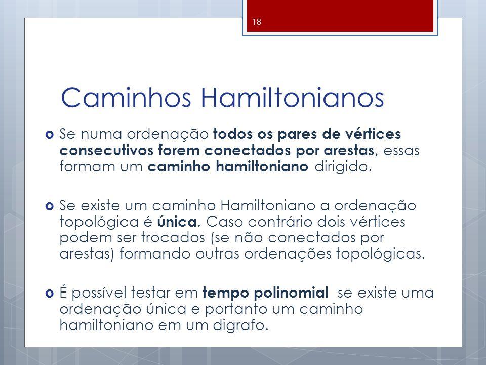 Caminhos Hamiltonianos