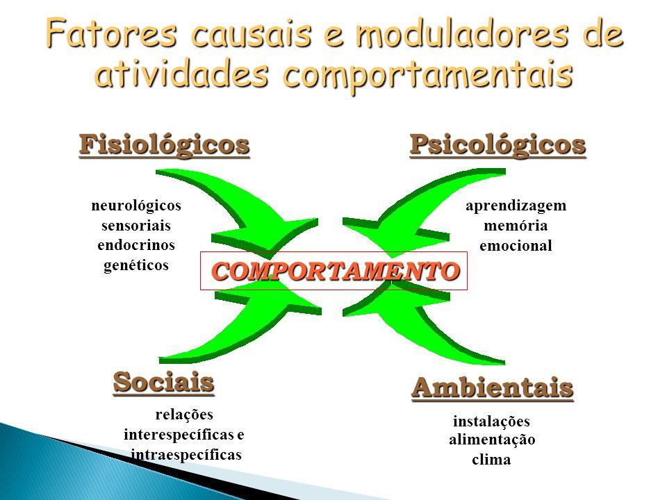 Fatores causais e moduladores de atividades comportamentais