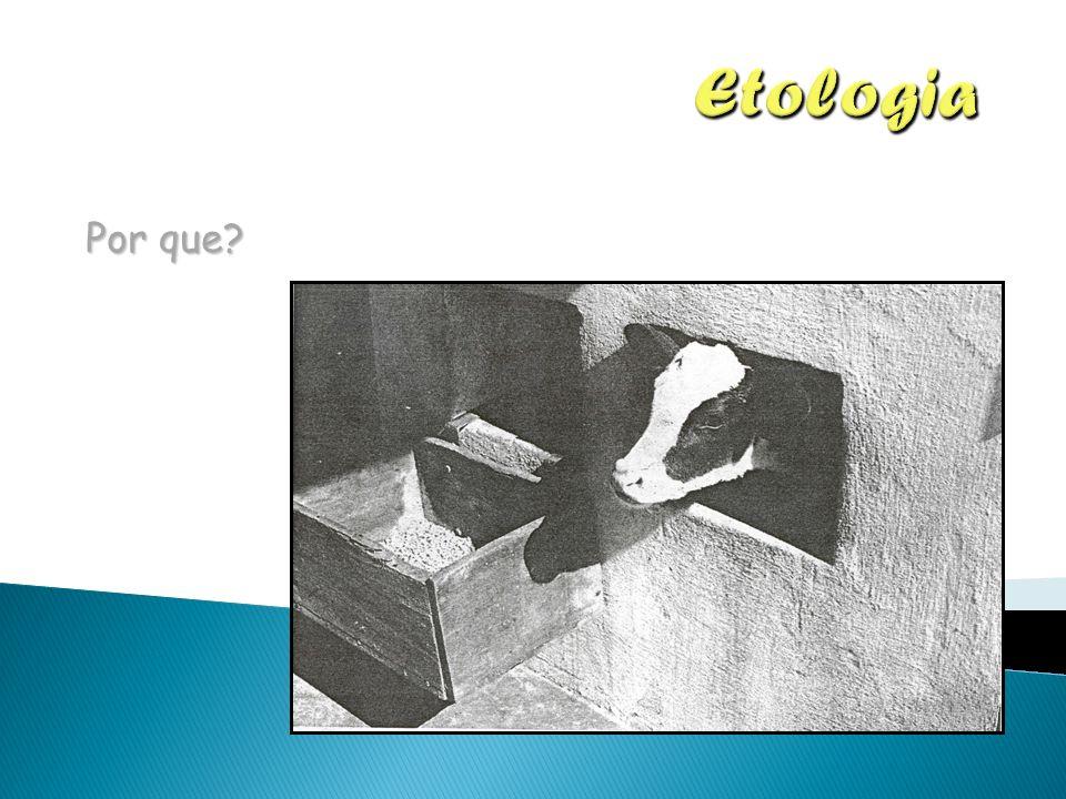 Etologia Por que