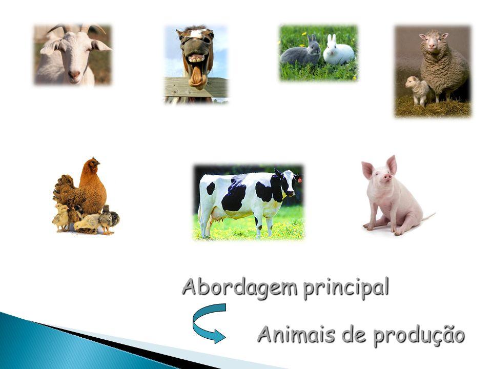 Abordagem principal Animais de produção