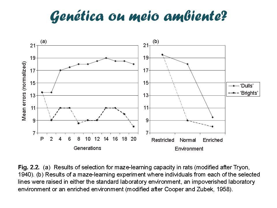 Genética ou meio ambiente