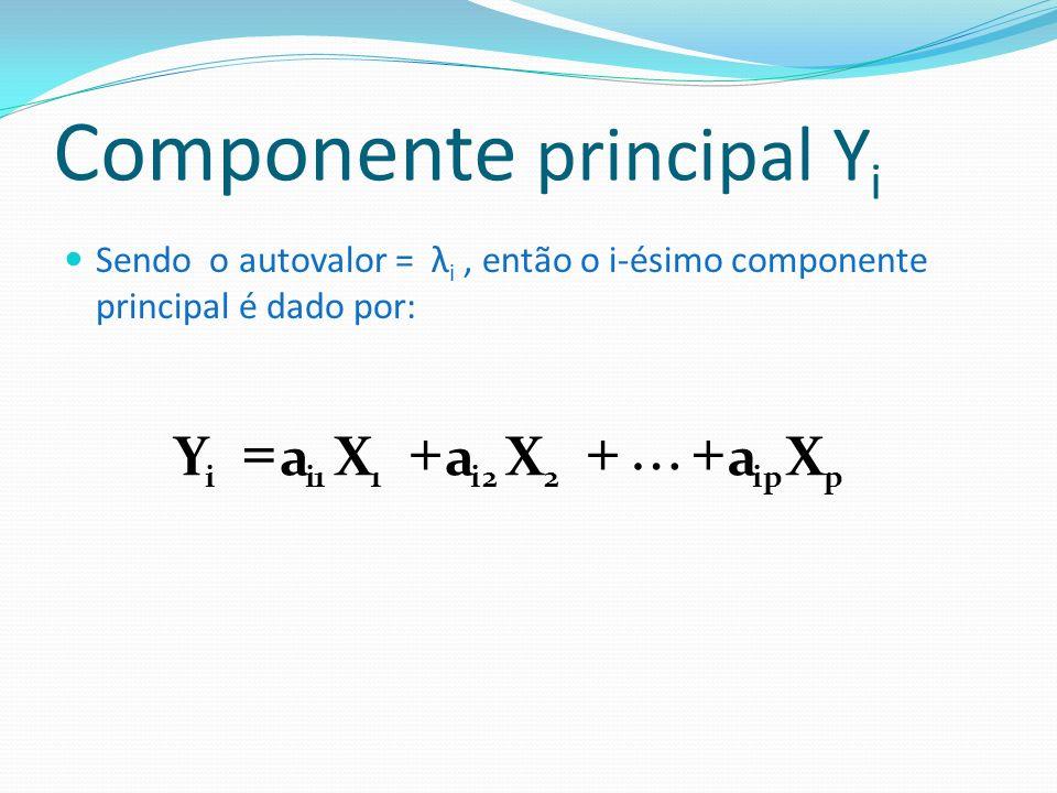 Componente principal Yi