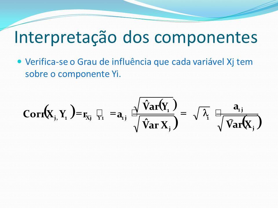 Interpretação dos componentes
