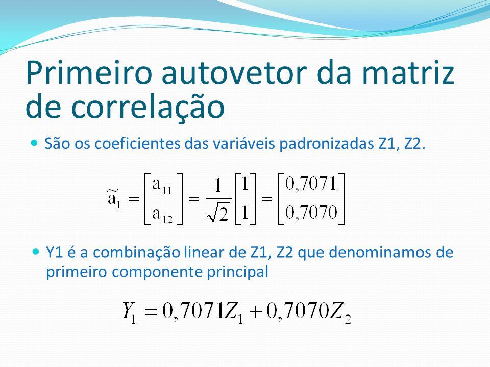 Primeiro autovetor da matriz de correlação