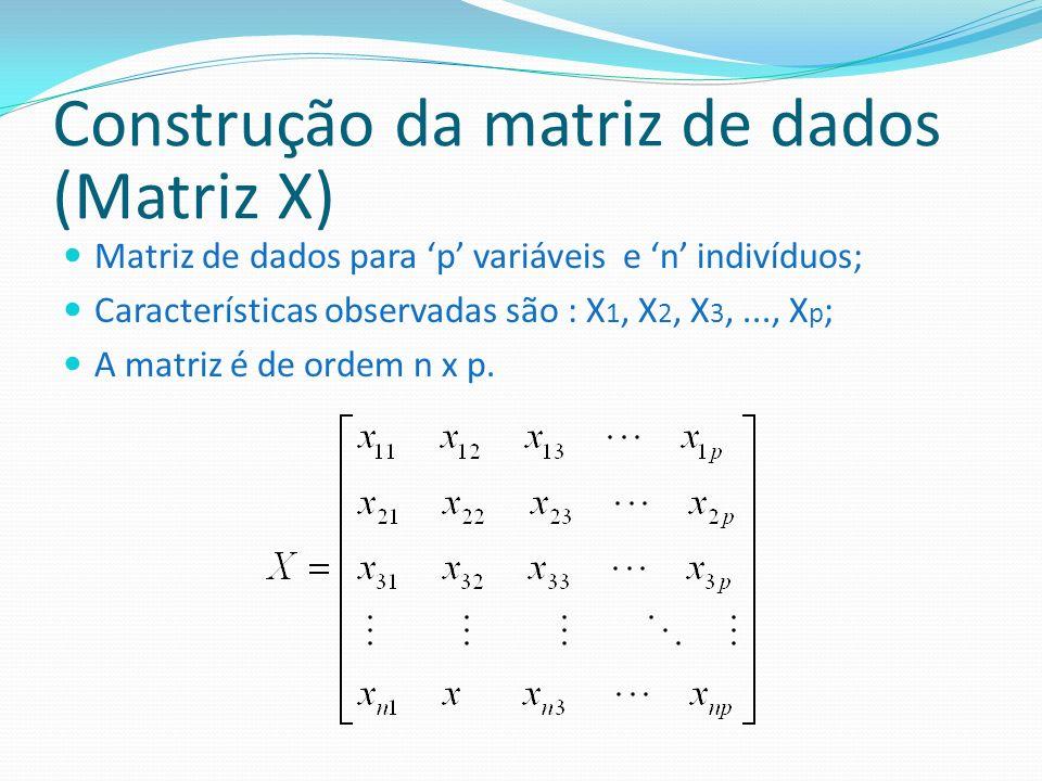 Construção da matriz de dados (Matriz X)