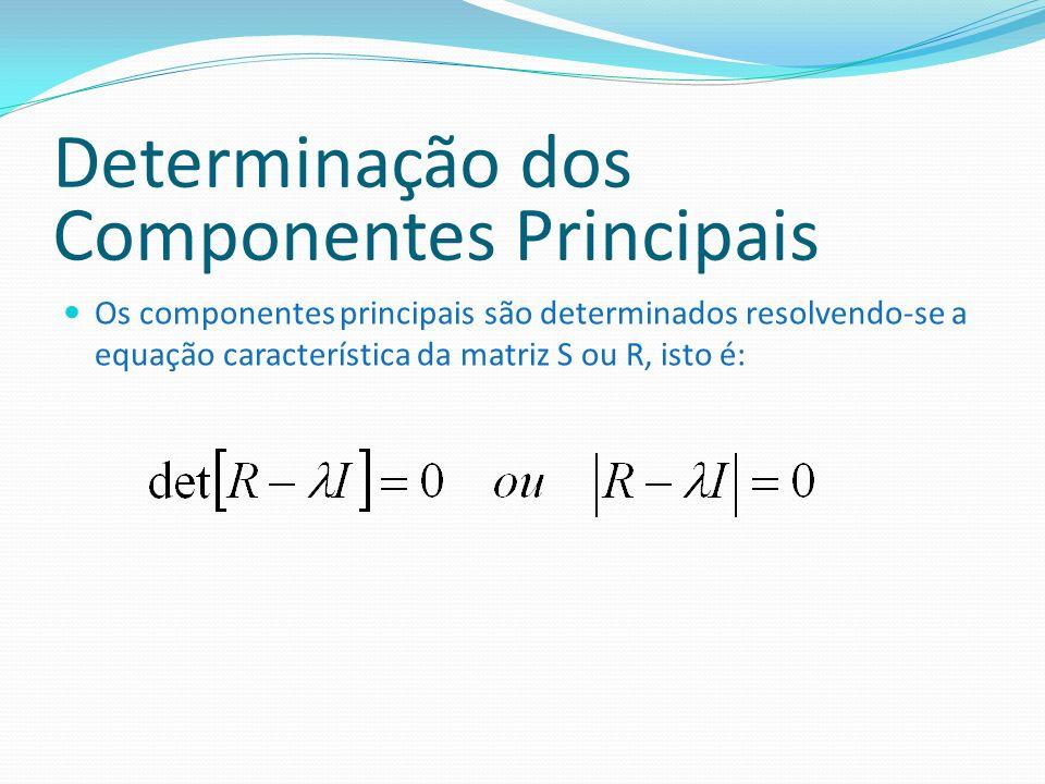 Determinação dos Componentes Principais