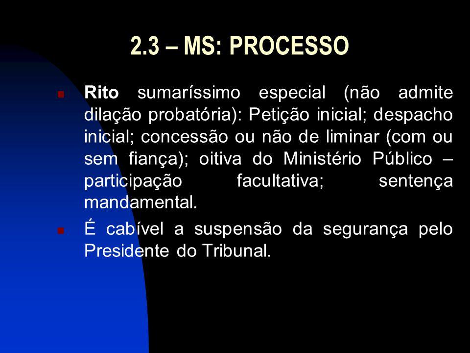 2.3 – MS: PROCESSO