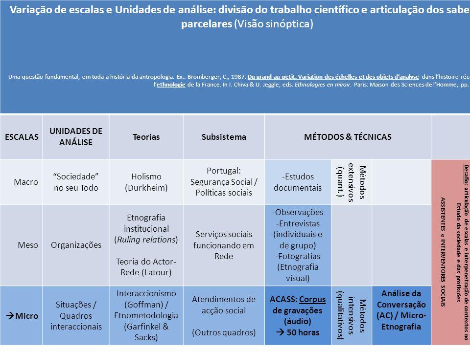Variação de escalas e Unidades de análise: divisão do trabalho científico e articulação dos saberes parcelares (Visão sinóptica)