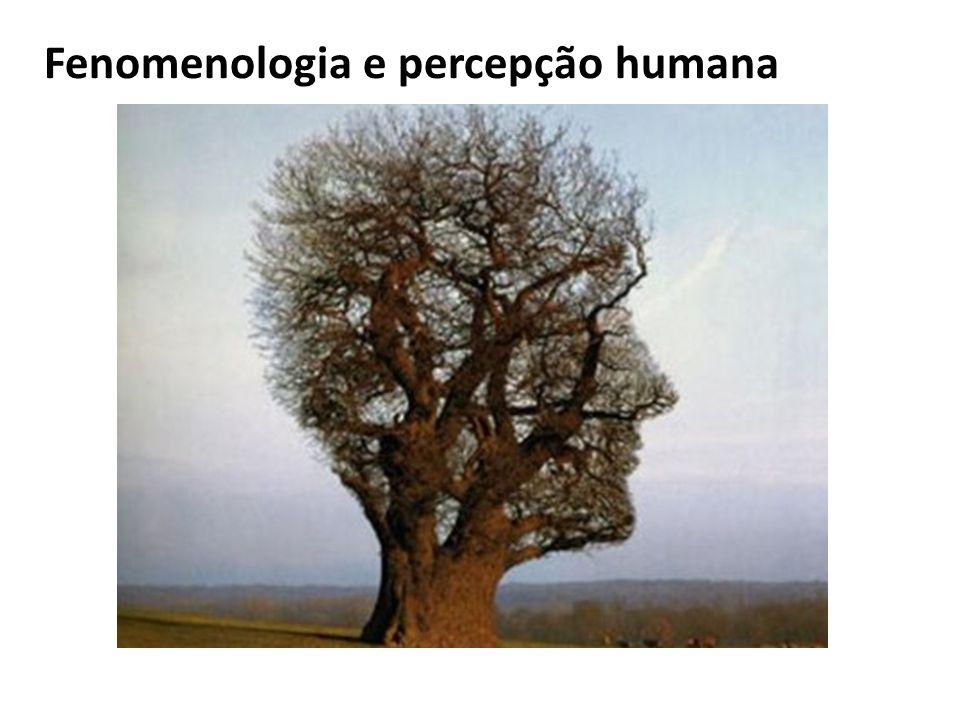 Fenomenologia e percepção humana
