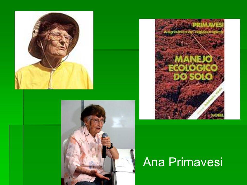 Ana Primavesi