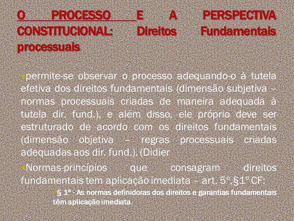 O PROCESSO E A PERSPECTIVA CONSTITUCIONAL: Direitos Fundamentais processuais