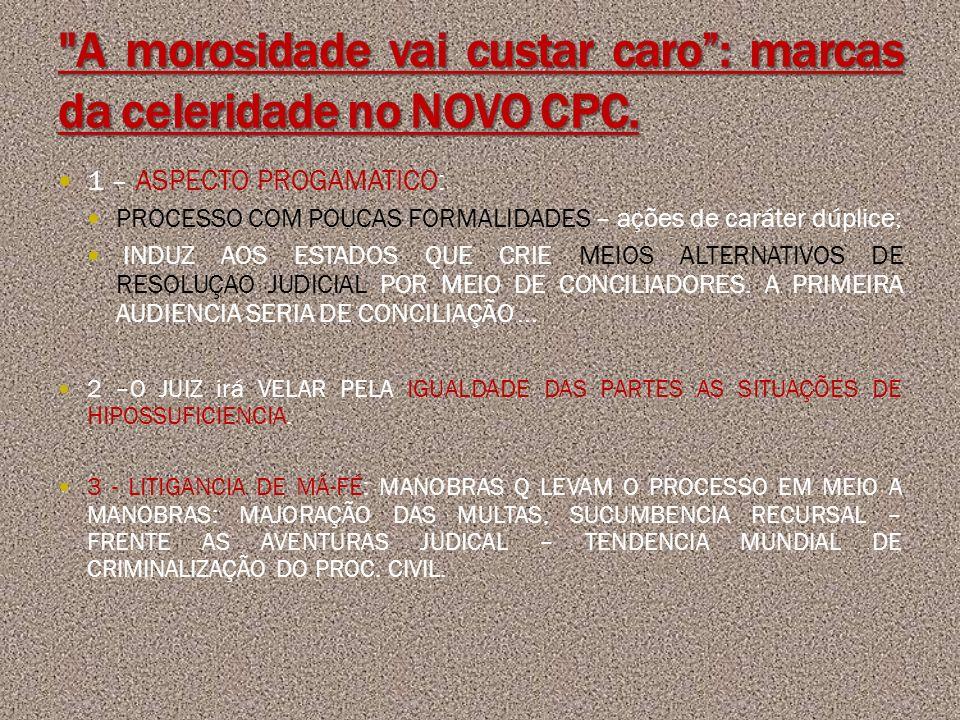 A morosidade vai custar caro : marcas da celeridade no NOVO CPC.