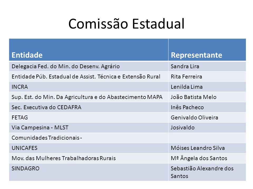 Comissão Estadual Entidade Representante