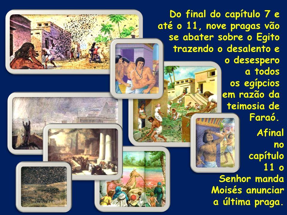 Do final do capítulo 7 e até o 11, nove pragas vão se abater sobre o Egito trazendo o desalento e