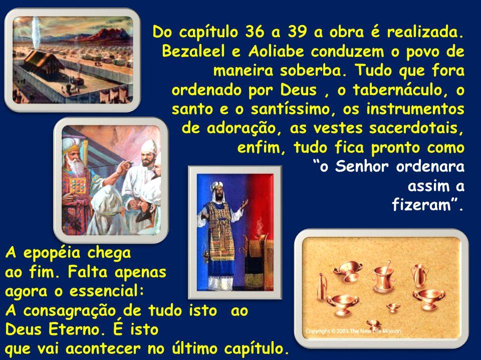 Do capítulo 36 a 39 a obra é realizada.
