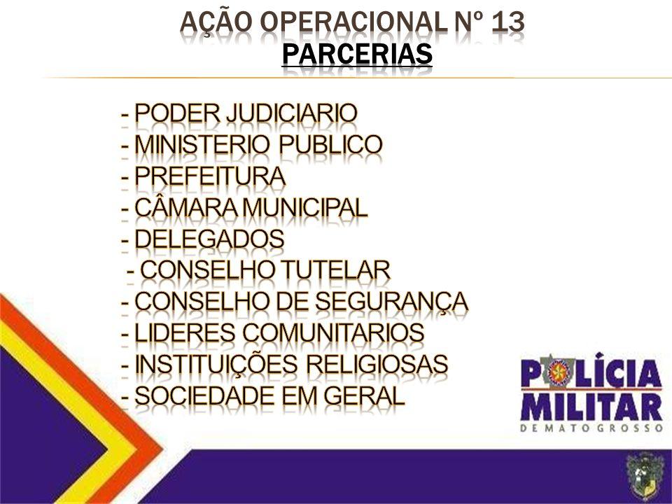 AÇÃO Operacional nº 13 PARCERIAS