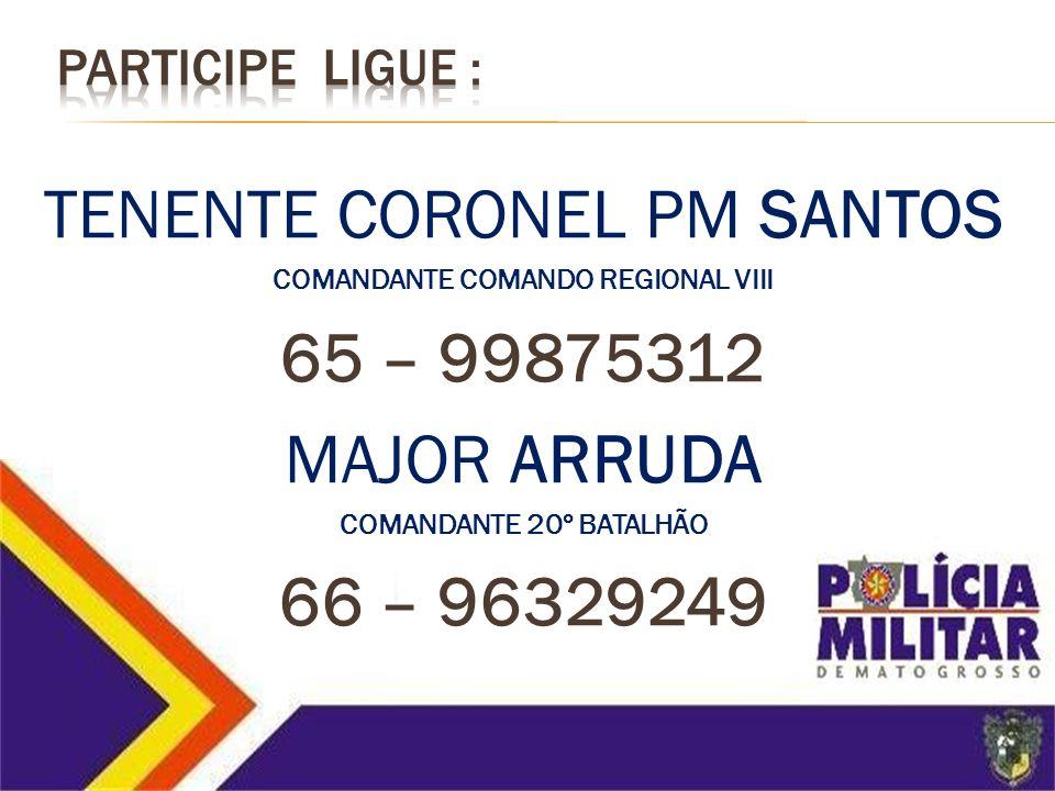 COMANDANTE COMANDO REGIONAL VIII