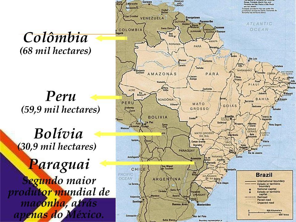Segundo maior produtor mundial de maconha, atrás apenas do México.