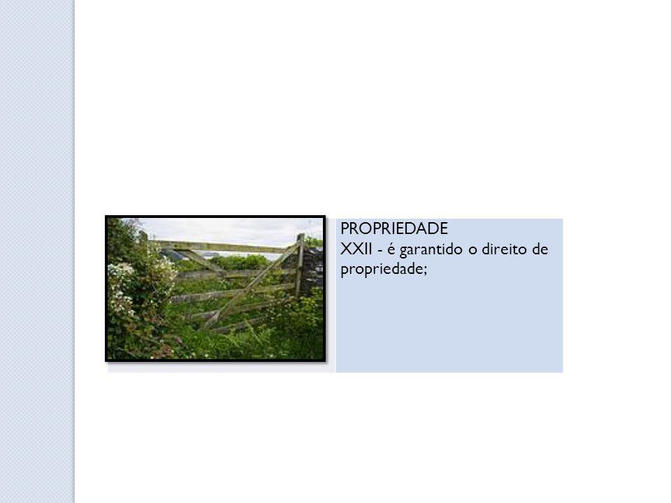 PROPRIEDADE XXII - é garantido o direito de propriedade;