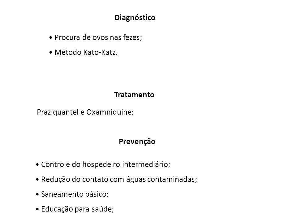 Diagnóstico Procura de ovos nas fezes; Método Kato-Katz. Tratamento. Praziquantel e Oxamniquine;