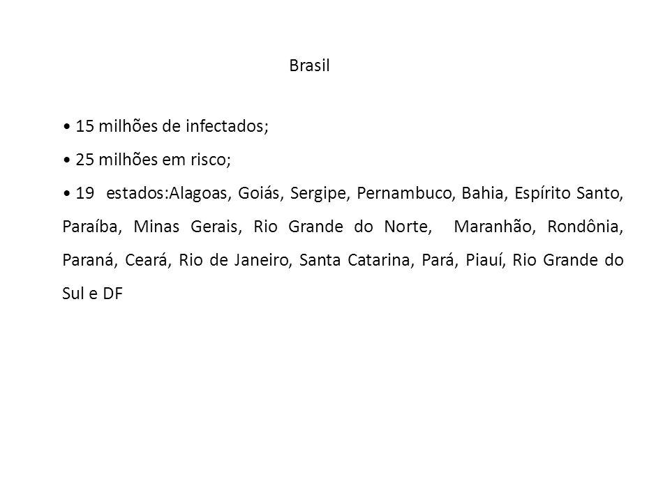 Brasil 15 milhões de infectados; 25 milhões em risco;