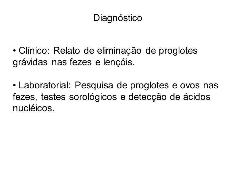Diagnóstico Clínico: Relato de eliminação de proglotes grávidas nas fezes e lençóis.