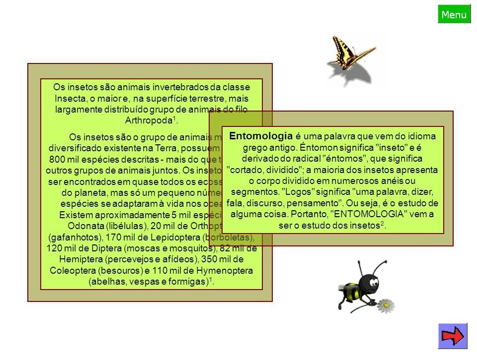 Os insetos são animais invertebrados da classe Insecta, o maior e, na superfície terrestre, mais largamente distribuído grupo de animais do filo Arthropoda1.