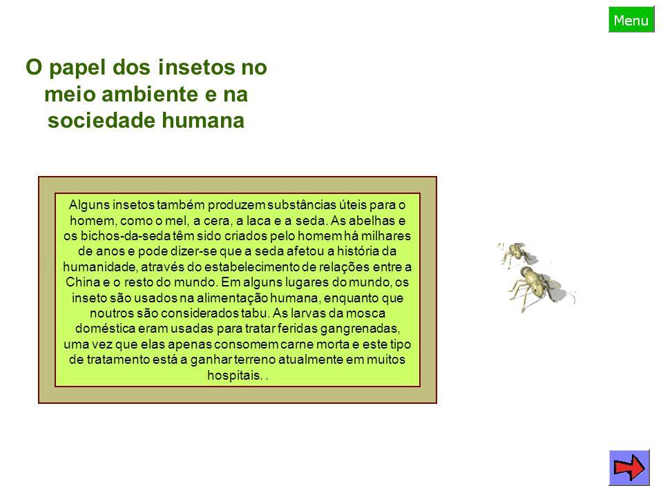 O papel dos insetos no meio ambiente e na sociedade humana