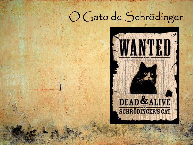 O Gato de Schrödinger
