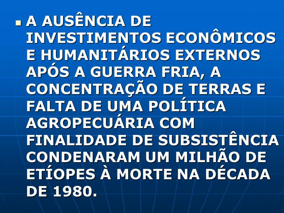 A AUSÊNCIA DE INVESTIMENTOS ECONÔMICOS E HUMANITÁRIOS EXTERNOS APÓS A GUERRA FRIA, A CONCENTRAÇÃO DE TERRAS E FALTA DE UMA POLÍTICA AGROPECUÁRIA COM FINALIDADE DE SUBSISTÊNCIA CONDENARAM UM MILHÃO DE ETÍOPES À MORTE NA DÉCADA DE 1980.