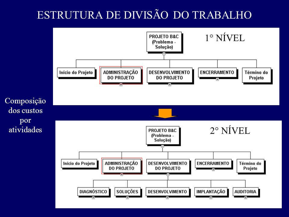 ESTRUTURA DE DIVISÃO DO TRABALHO