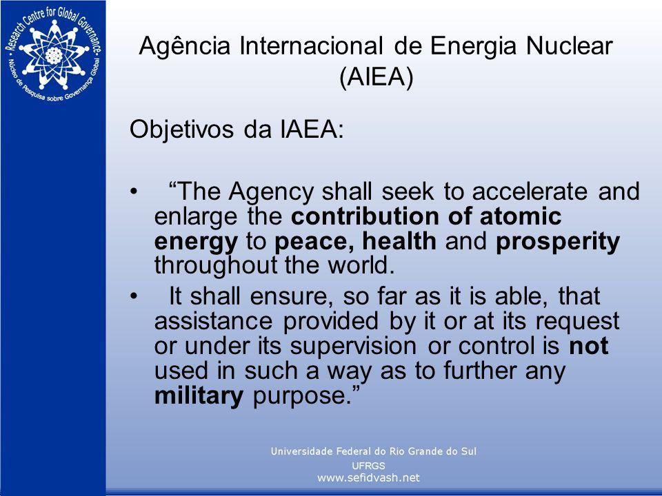 Agência Internacional de Energia Nuclear (AIEA)