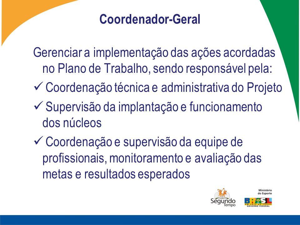 Coordenador-Geral Gerenciar a implementação das ações acordadas no Plano de Trabalho, sendo responsável pela: