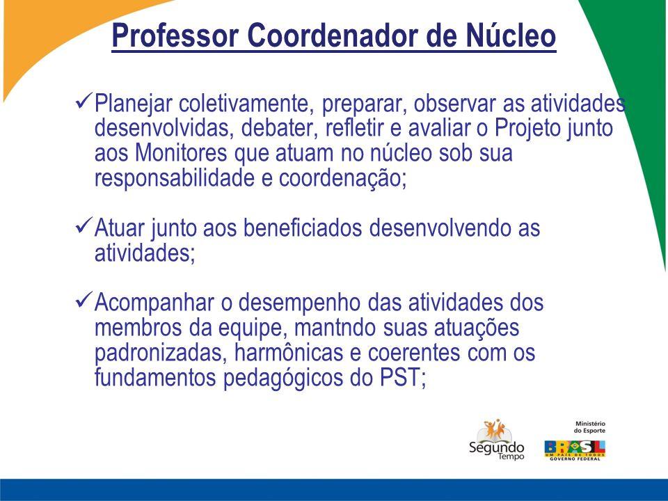 Professor Coordenador de Núcleo