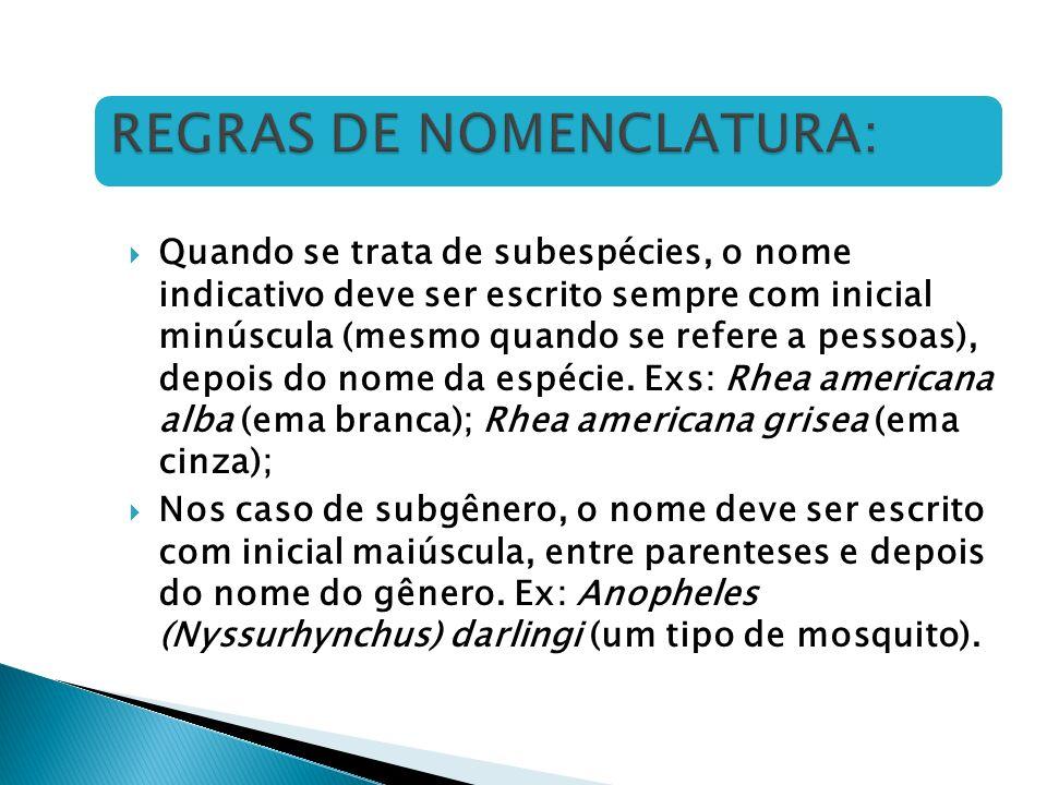 REGRAS DE NOMENCLATURA: