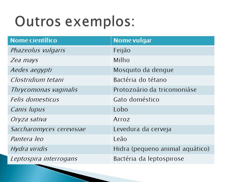 Outros exemplos: Nome científico Nome vulgar Phazeolus vulgaris Feijão