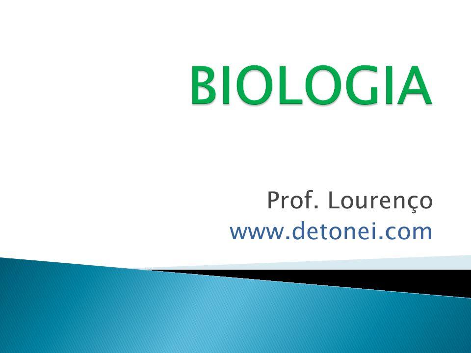Prof. Lourenço www.detonei.com