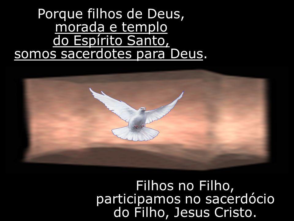 Filhos no Filho, participamos no sacerdócio do Filho, Jesus Cristo.