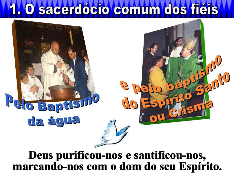 1. O sacerdócio comum dos fiéis